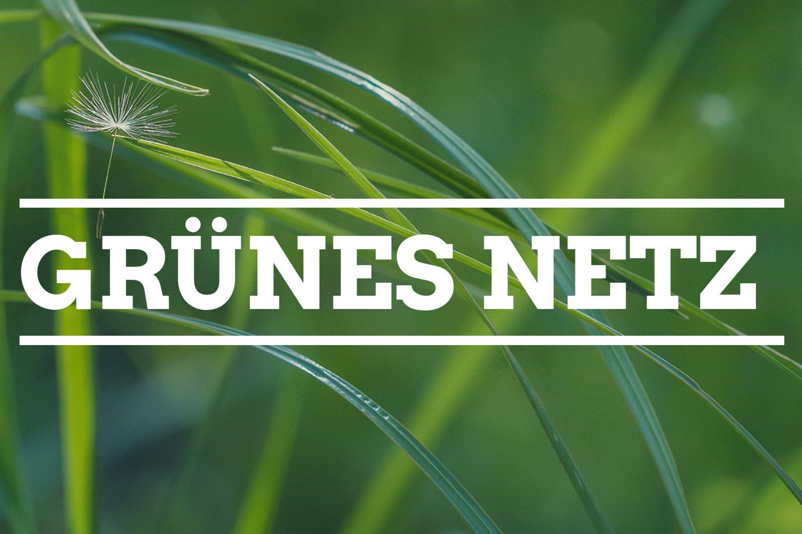 Symbolbild: Grünes Netz